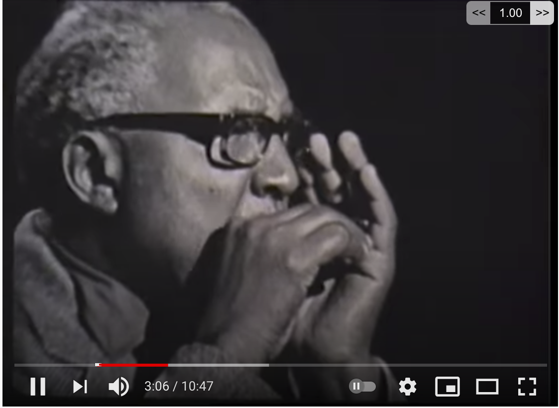 "Sonny Terry: ""Country Blues Harmonica"""